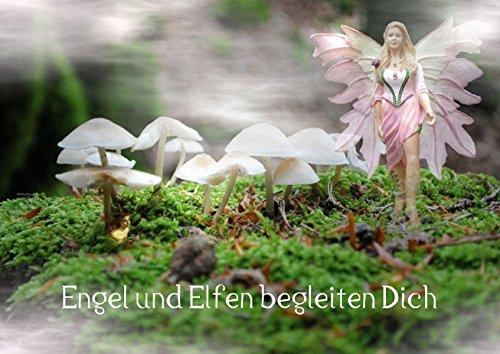 9783660302868: Engel und Elfen begleiten Dich (Posterbuch DIN A4 quer): Begegnung mit Engeln und Elfen in der Stille der Natur (Posterbuch, 14 Seiten)