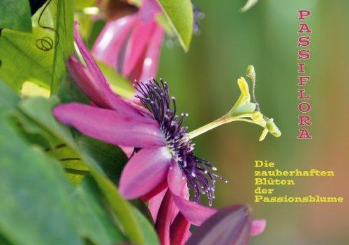 9783660308259: Passiflora - Posterbuch