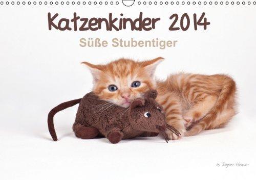 9783660324525: Katzenkinder 2014 - Süße Stubentiger - by Regine Heuser - Author: Heuser Regine