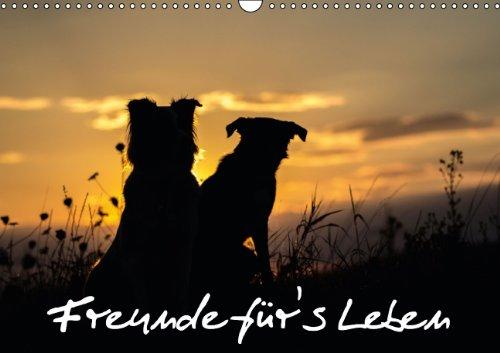 9783660328424: Hunde Freunde F� R S Leben Wandkalen
