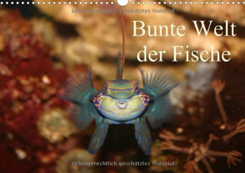 9783660451443: Bunte Welt der Fische: Bunte Welt der Fische A3 quer