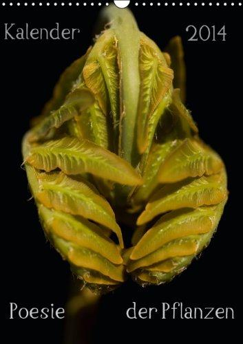 9783660474855: Poesie der Pflanzen: Poesie der Pflanzen A3 hoch