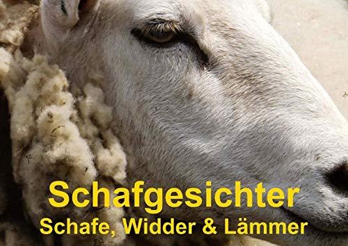 9783660477870: Schafgesichter . Schafe, Widder & Lämmer (Posterbuch DIN A4 quer): Schöne Schafe, Widder und niedlichen Lämmer für jeden Tierfreund (Posterbuch, 14 Seiten)