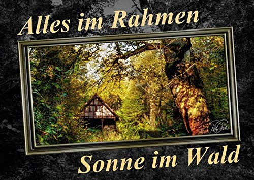 9783660510874: Alles im Rahmen - Sonne im Wald (Posterbuch DIN A3 quer): Sonne im Wald, zauberhafte Farben, geheimnisvolles Licht - alles im Rahmen (Posterbuch, 14 Seiten)