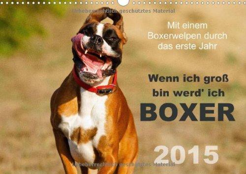9783660564679: Wenn Ich Groãÿ Bin Werd Ich Boxer Wan