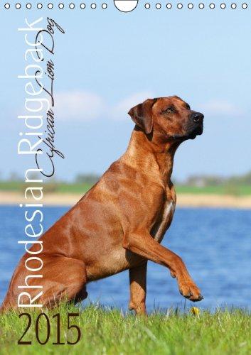 9783660580020: Rhodesian Ridgeback African Lion Dog (Wandkalender 2015 DIN A4 hoch): Hundekalender Rhodesian Ridgeback African Lion Dog (Monatskalender, 14 Seiten)