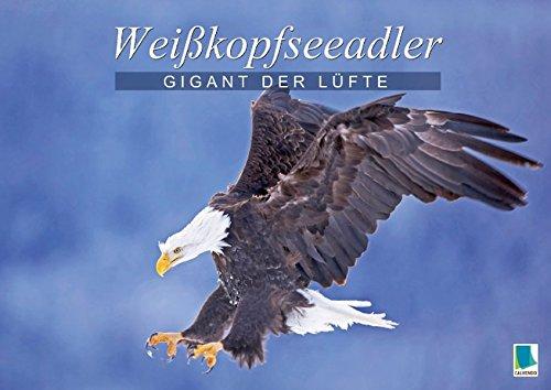 9783660585728: Gigant der Lüfte: Weißkopfseeadler (Posterbuch DIN A2 quer): Das Wappentier der USA - Stolze Greifvögel (Posterbuch, 14 Seiten)