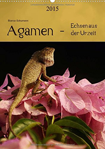 9783660593563: Agamen Echsen Aus Der Urzeit Wandkal