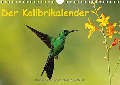 9783660606461: Der Kolibrikalender Wandkalender 2015
