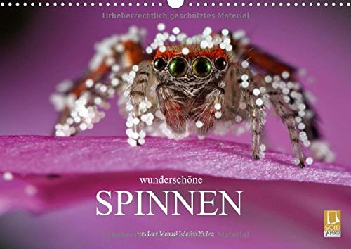 9783660615807: Wundersch�ne Spinnen Wandkalender 201