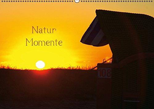 9783660621273: Natur Momente Wandkalender 2015 Din A2