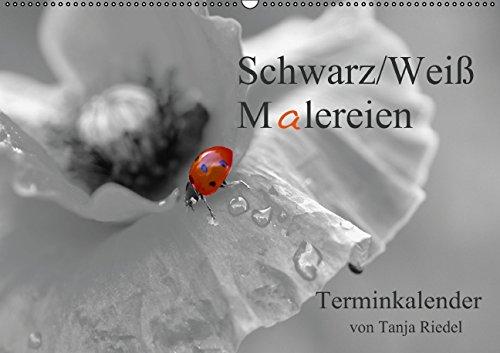 9783660666328: Schwarz Wei�� Malereien Terminkalender