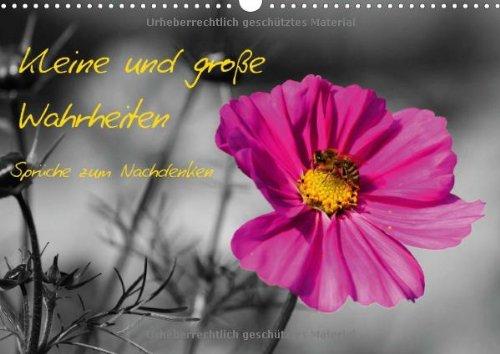 9783660677515: Kleine Und Groãÿe Wahrheiten Sprã Che