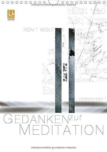 9783660690279: Gedanken zur Meditation - Author: Wolf Ronit