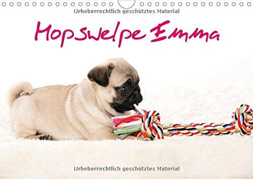 9783660715378: Mopswelpe Emma Wandkalender 2015 Din a
