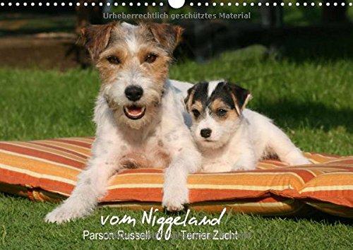 9783660719758: Parson Russell Terrier Zucht Vom Nigge
