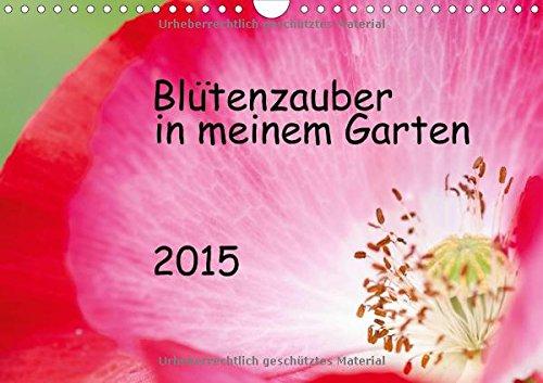 9783660728798: Blütenzauber in meinem Garten - Author: JuSev