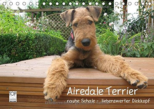 9783660732498: Airedale Terrier - Author: Rottmann Gaby