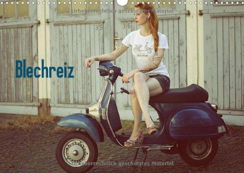 9783660735581: Blechreiz - Author: Oelschläger Britta