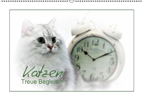 9783660740806: Katzen Treue Begleiter Wandkalende
