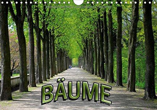 9783660745337: Bäume 2015 - Author: Geduldig Bildagentur