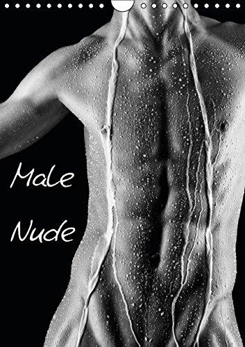 9783660801828: Male Nude - Author: kalender365.com