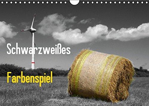 9783660833454: Schwarzweiãÿes Farbenspiel Geburtstag