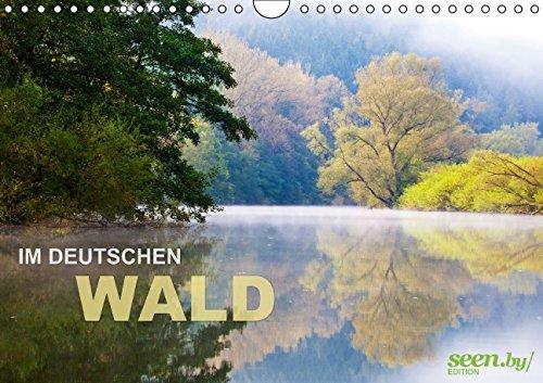 9783660961201: Im Deutschen Wald 2015 Wandkalender 20