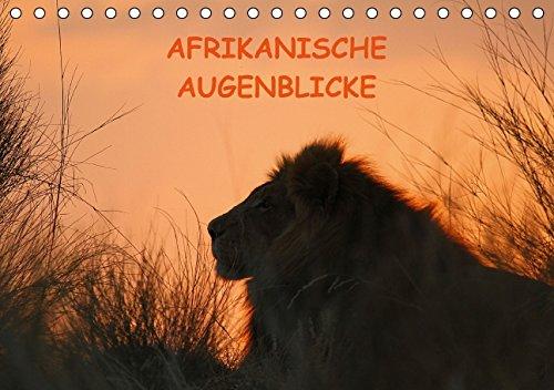 9783660975659: Afrikanische Augenblicke - Author: Schneeberger Daniel