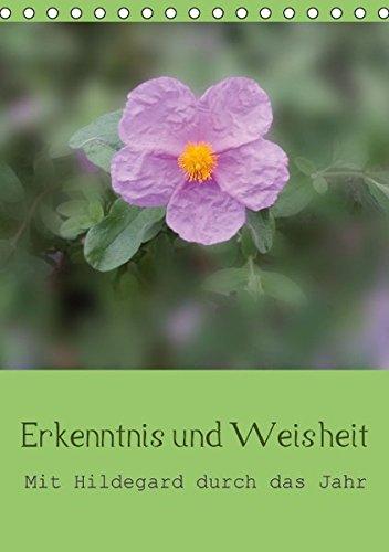9783660976236: Erkenntnis und Weisheit - Hildegard von Bingen - Author: Bergmann Christine