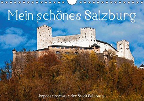 9783660977295: Mein Sch�nes Salzburgat Version Wand