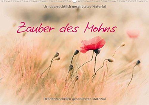 9783660988925: Zauber Des Mohns Wandkalender 2015 Din