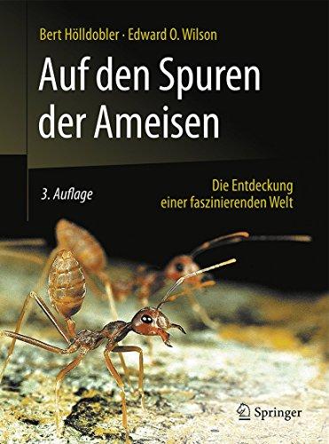 9783662484067: Auf den Spuren der Ameisen: Die Entdeckung einer faszinierenden Welt