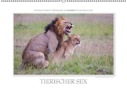 9783664024476: Emotionale Momente Tierischer Sex. C