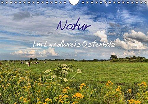 9783664081165: Natur im Landkreis Osterholz (Wandkalender 2015 DIN A4 quer): Schöne Fotos aus dem Landkreis Osterholz (Monatskalender, 14 Seiten)