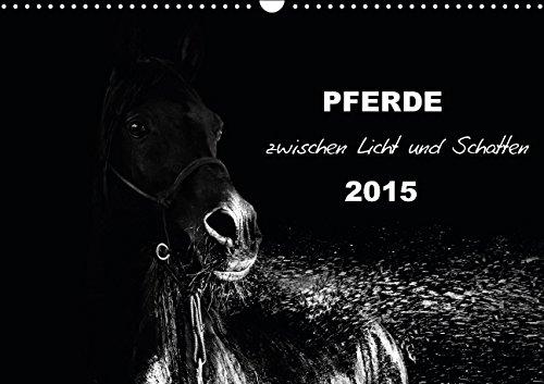 9783664102402: Pferde zwischen Licht und Schatten (Wandkalender 2015 DIN A3 quer): Pferde vor schwarzem Hintergrund eindrucksvoll mit Licht in schwarzweiß dargestellt (Monatskalender, 14 Seiten)