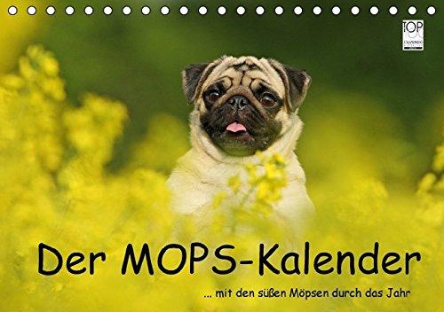 9783664130269: Der MOPS-Kalender (Tischkalender 2016 DIN A5 quer)