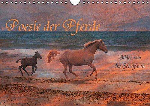 9783664195084: Poesie der Pferde (Wandkalender 2016 DIN A4 quer): Ein Pferdekalender der besonderen Art (Monatskalender, 14 Seiten)