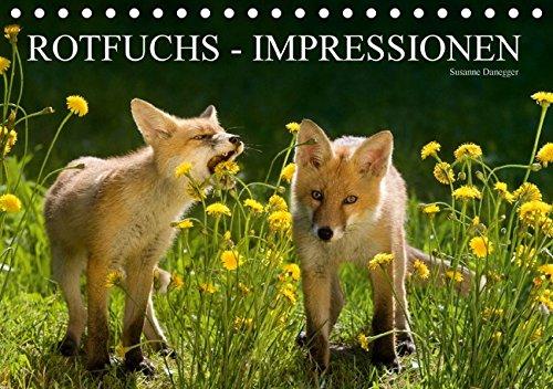 9783664206476: Rotfuchs - Impressionen (Tischkalender 2016 DIN A5 quer): Zauberhafte und ber�hrende Bilder aus dem Leben der F�chse. (Monatskalender, 14 Seiten)