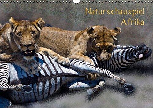9783664210480: Naturschauspiel Afrika (Wandkalender 2016 DIN A3 quer): Atemberaubende Augenblicke von Tier und Landschaft. (Monatskalender, 14 Seiten)
