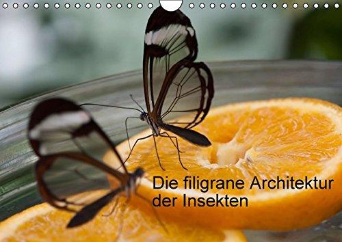 9783664218486: Die filigrane Architektur der Insekten (Wandkalender 2016 DIN A4 quer): Bunte Fotos von filigranen Geschöpfen (Monatskalender, 14 Seiten)
