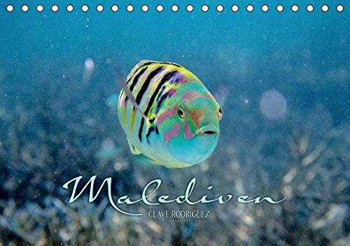 9783664228874: Unterwasserwelt der Malediven II (Tischkalender 2016 DIN A5 quer): Die vielfältige und faszinierende Unterwasserwelt der Malediven. (Monatskalender, 14 Seiten)