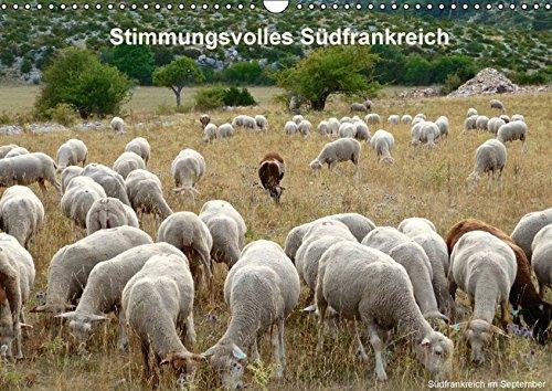 9783664264360: Stimmungsvolles Südfrankreich (Wandkalender 2016 DIN A3 quer)