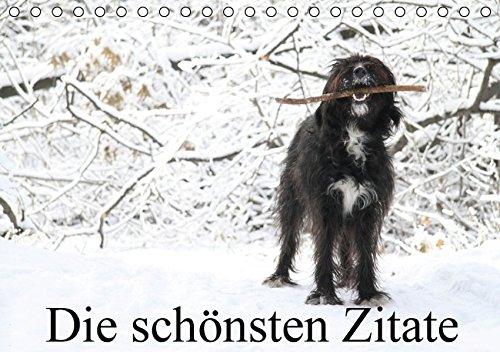 9783664276455: Die schönsten Zitate (Tischkalender 2016 DIN A5 quer): Zitatekalender mit einzigartigen Fotografien von Clarissa Itschert (Monatskalender, 14 Seiten)