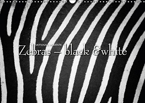 9783664281152: Emotionale Momente: Zebras - black & white. (Wandkalender 2016 DIN A3 quer): Herrliche Schwarzwei�-Fotos von den wildlebenden Zebras in Afrikas Savanne. (Monatskalender, 14 Seiten)