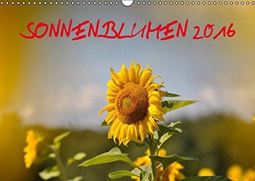 9783664284276: Sonnenblumen 2016 - Wandkalender 2016