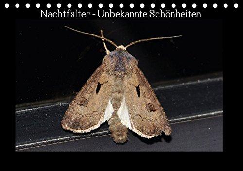 9783664297146: Nachtfalter - Unbekannte Schönheiten (Tischkalender 2016 DIN A5 quer): Heimische Nachtfalter aus Ostwestfalen (Monatskalender, 14 Seiten)
