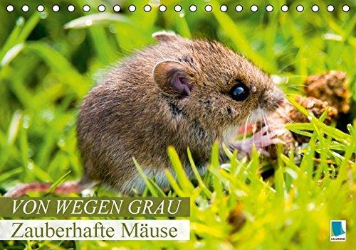 9783664344925: Von wegen grau: Zauberhafte Mäuse (Tischkalender 2016 DIN A5 quer): Possierliche Plagegeister (Monatskalender, 14 Seiten)