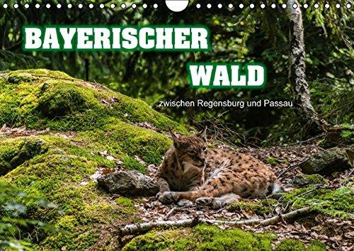 9783664366934: Bayerischer Wald (Wandkalender 2016 DIN A4 quer): zwischen Regensburg und Passau (Monatskalender, 14 Seiten)