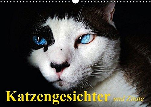 9783664367580: Katzengesichter und Zitate (Wandkalender 2016 DIN A3 quer): Unwiderstehliche Katzengesichter f�r alle Samtpfoten-Liebhaber (Geburtstagskalender, 14 Seiten)